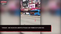 Turquie : Une vache en liberté attaque une femme en pleine rue (Vidéo)