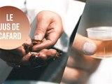 Jus de cafard : la boisson bonne pour la santé ?