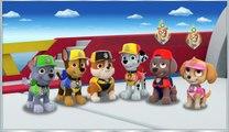 Paw Patrol Sea Patrol - New Sea Patrol Preschool Kids Game - Nickjr Kids Video