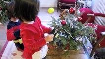 VLOG - Nos CHATS ouvrent leurs CADEAUX de Noël ! JOUET, COLLIERS et DVD pour chats
