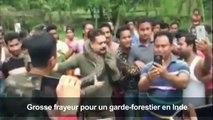 Inde: un selfie avec un python lui coûte presque la vie