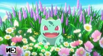Pokemon Se17 Ep38 Down to the Fiery Finish HD Watch