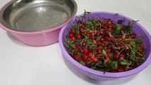 Sakla Vişneyi Gelir Zamanı-Şimdi Kışa Hazırlanmanın Tam Zamanı-Aradığınız Herşey Ritmik Mutfakta