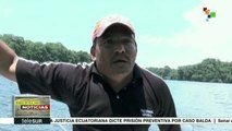 Palma africana amenaza el Parque Nacional Jeanette Kawas en Honduras