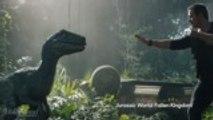 'Jurassic World': Where Will the Franchise Go Next? | Heat Vision Breakdown