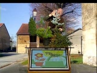 Visionnez les Cours Vidéo de Bien choisir son arbre de no�l