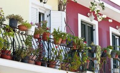 Jardinage : 3 astuces pour jardiner sur un balcon