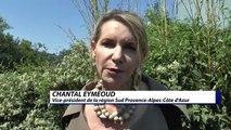 Hautes-Alpes : Chantal Eymeoud s'explique  sur la tarification des transports scolaires