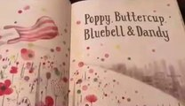 My  Fun Toys Story Telling Time / Reading  Poppy Buttercup / Learning With My Fun Toys
