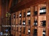 California wines, wine clubs, wine makin