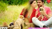 New Whatsapp Status for GirlsNew Romantic WhatsApp Status Video 2018, New LoveWhatsApp Status Video, whatsapp sad status, whatsapp sad video, whatsapp sad song, whatsapp sad status in hindi, whatsapp sad love story, whatsapp sad dp, whatsapp sad chat, wha