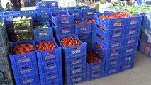 Antalya'da domates fiyatları yüzde 400 arttı...'Tuta' domates fiyatlarına tavan yaptırdı
