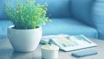 Tips to Make Your House Eco-Friendly: ऐसे बनाएं घर को Eco-Friendly, दूर होगी Negativity | Boldsky