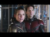 Ant-Man And The Wasp: First Reactions