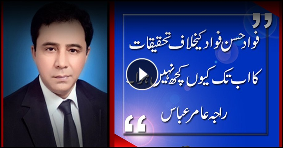Why is there no action against Fawad Hasan Fawad, asks Raja Amir Abbas