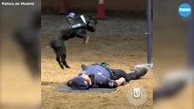 Un chien de police essaye de sauver un policier avec du RCP !