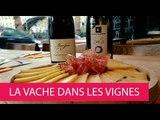 LA VACHE DANS LES VIGNES - FRANCE, PARIS