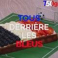 Allez les bleus ! On vous supporte avec notre super gâteau bleu, blanc, rouge LA RECETTE :