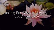 Call @ (213) 394-4645 For Send Flowers Los Angeles CA