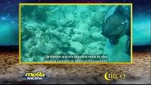 Dra. Antares Ramos de la Oficina para el Manejo de Costas de NOAA habla sobre la situación de los arecífes de coral luego del paso de los huracanes por Puerto R
