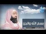 بسم الله والجن - الشيخ نبيل العوضي