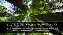Surah Al-Mu'minoon by Qari Idrees Al-Hashmi | سورة المؤمنون |  القارئ إدريس الهاشمي | Beautifull Recitation of Quran | تلاوة القرآن الكريم مع الترجمة |#Islamic #Media