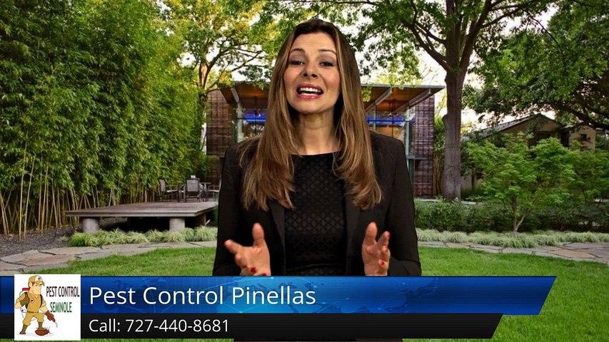 Seminole Termite & Pest Control Review of  Pest Control Pinellas Seminole FLGreat Five Star Re...