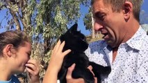 Man Finds Cat a Week After Woolsey Fire