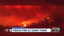 Top stories: Search for hit-and-run driver, fire at dairy farm, heat continues