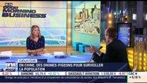 Anthony Morel: Des drones-pigeons pour surveiller la population chinoise - 09/07