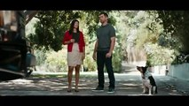 State Farm TV Commercial, 'Together' Ft. Aaron Rodgers, Clay Matthews