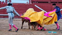 Le torero Juan José Padilla se fait scalper par un taureau