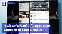 Twitter's Stock Plunges Over Concern of User Growth