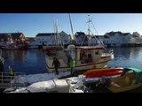 2017 Volkswagen VW T6 California 2017 Trip to the Lofoten Islands in the Camper | AutoMotoTV