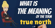 What is TRUE NORTH? What does TRUE NORTH mean? TRUE NORTH meaning, definition & explanation