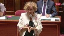 Muriel Pénicaud présente l'amendement du gouvernement sur l'assurance chômage