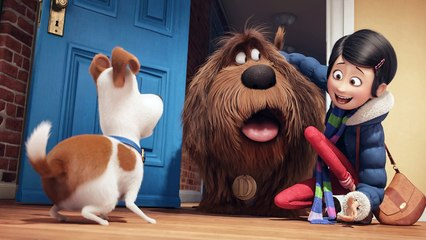 The Secret Life Of Pets Full Movie Online 2016 Videos Dailymotion