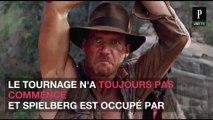La sortie d'Indiana Jones 5 est bien repoussée en juillet 2021