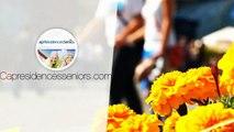T2 Résidence Senior Reims - Investir dans un T2 en Résidence avec services pour Senior à REIMS