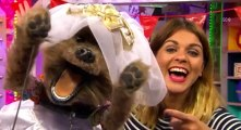 Marrying Mum and Dad S05 - Ep01 The Marrying Mum and Dad Awards HD Watch