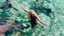 L'instagrameuse Katarina Zarutskie mordue par un requin en pleine séance photo