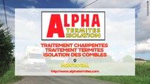 Alpha Termites Isolation : traitement des termites et des charpentes, isolation à Montayral