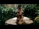 Alvin et les Chipmunks - Extrait 3 : La chanson