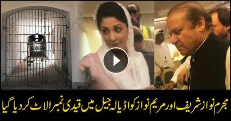 Nawaz, Maryam shifted to Adiala Jail in Rawalpindi