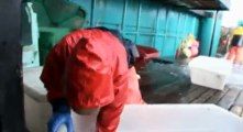 Deadliest Catch Crab Fishing in Alaska S03  E11 Ice and Open Water - Part 01