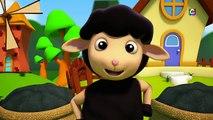 Panda do bebê Bao | Hokey Pokey | Rimas para crianças | Nursery Song For Babies | Baby Bao Panda