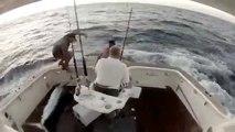 Un marlin saute dans le bateau et le pecheur saute à la mer