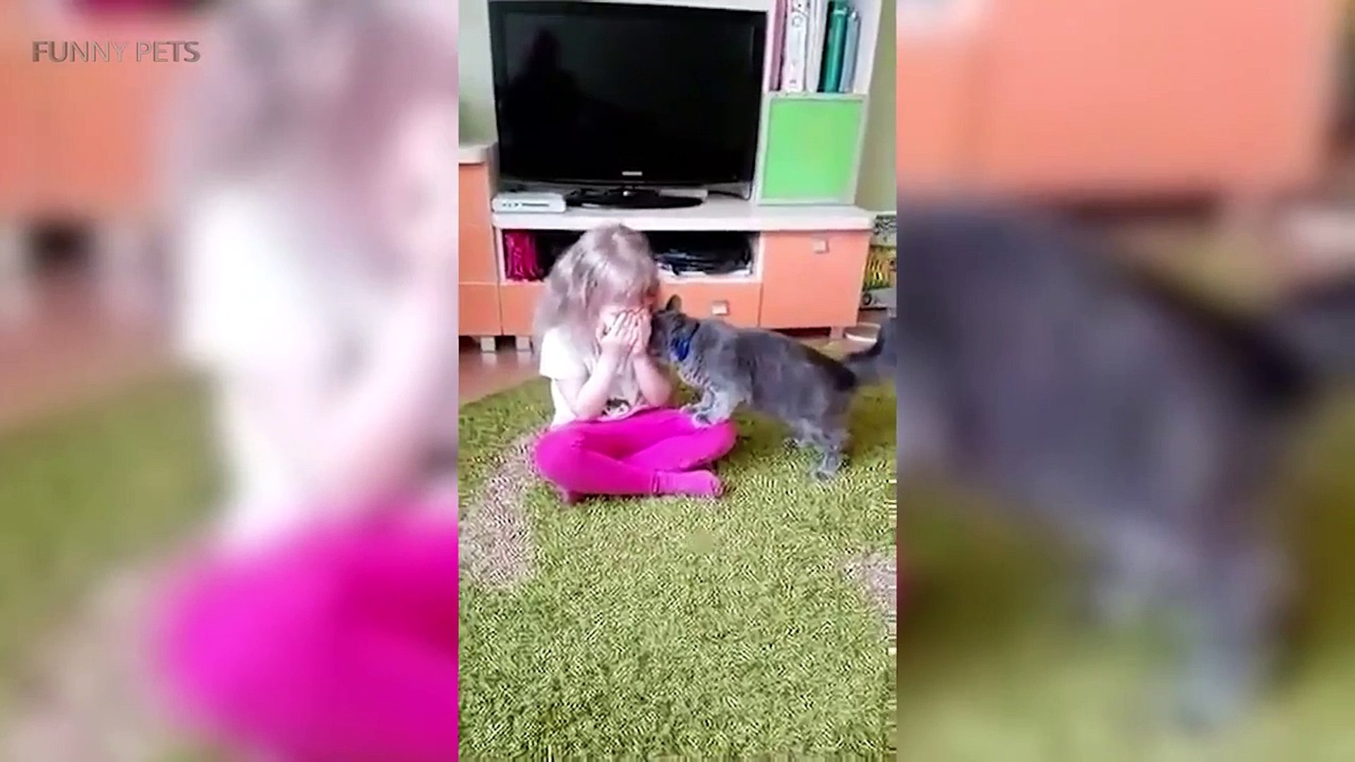 Children and Pets  Funny Children Playing with Pets Funny Pets