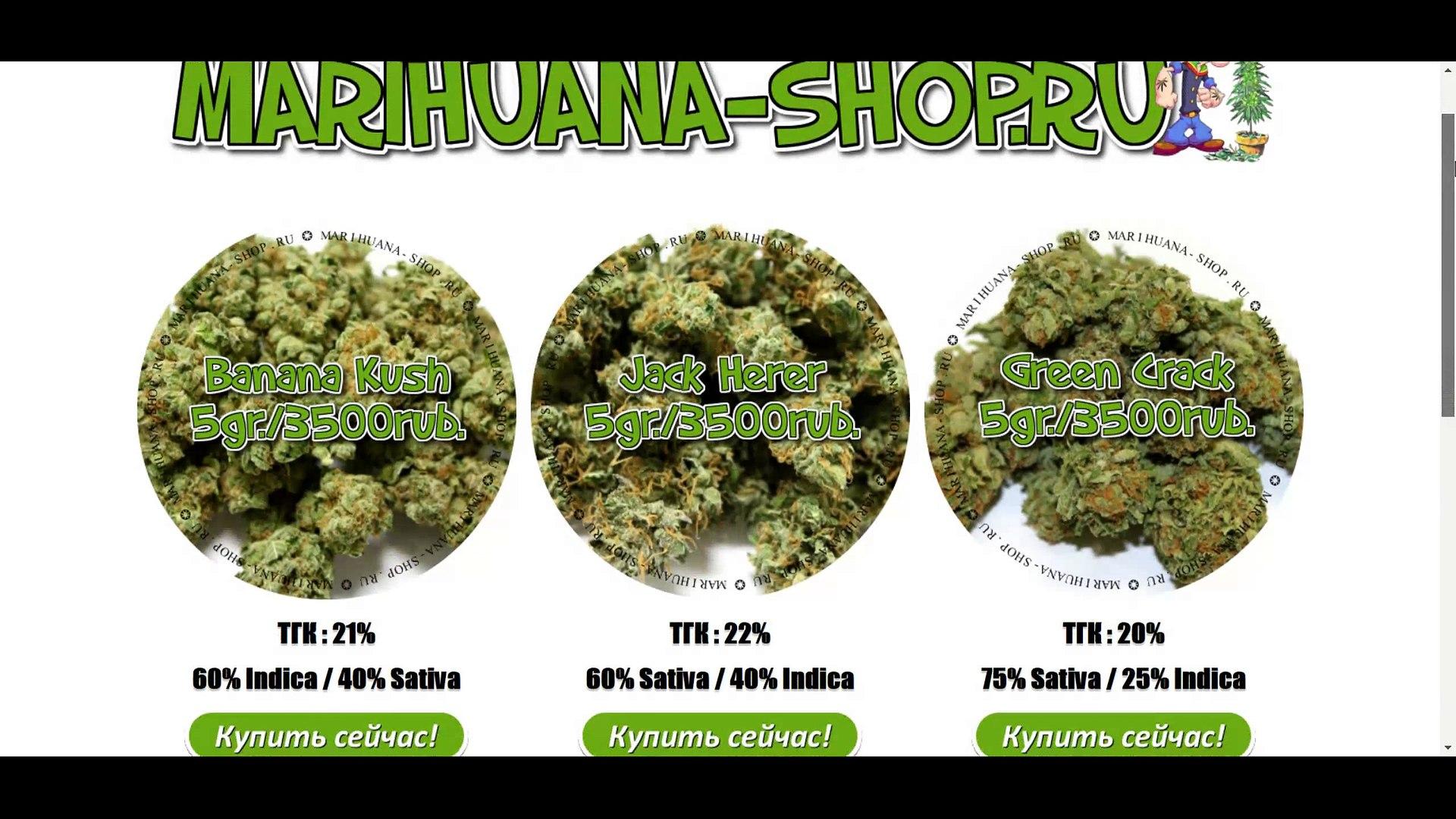 Купить марихуану махачкала эбола и марихуана