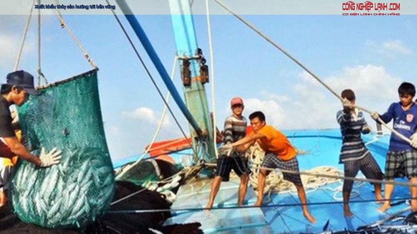 Xuất khẩu thủy sản hướng tới bền vững